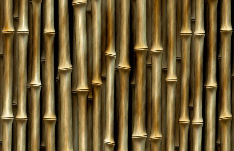 Bambusowe rolety i naturalny styl